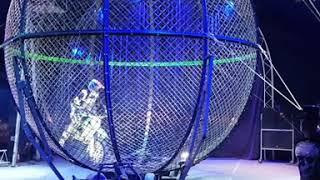 Интернациональный экстримальный цирк шапито Демидовых