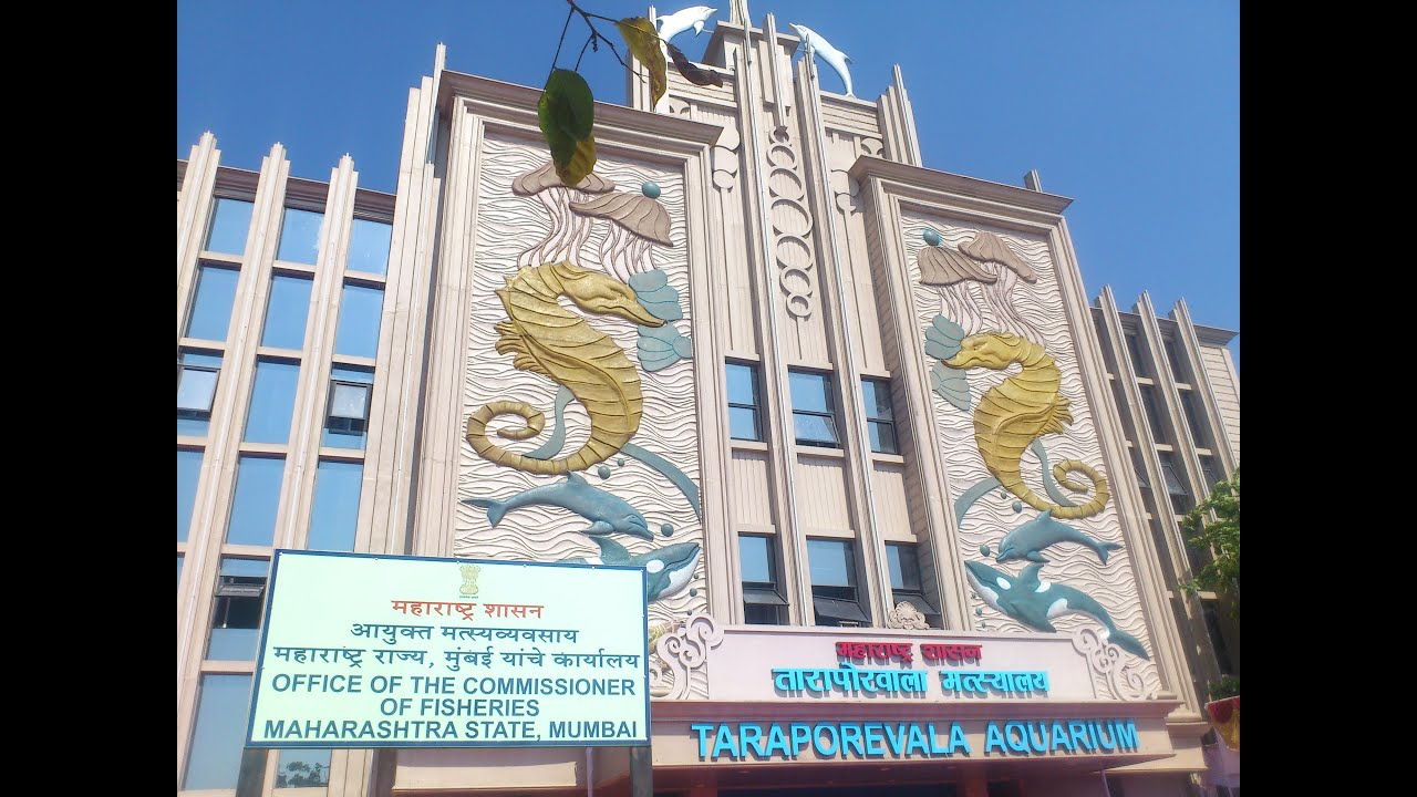 Fish aquarium tarapur - Taraporewala Aquarium Building Mumbai