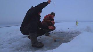 ТАК МОЖНО ЖИТЬ НА ЛЬДУ РЫБА НЕ ДАЕТ ОТДЫХАТЬ рыбалка на водохранилище 2021