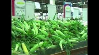 Your Dekalb Farmers Market