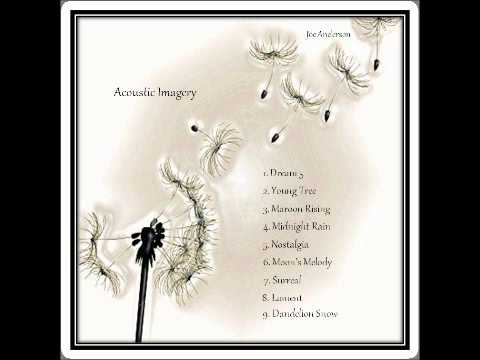 """Moon's Melody"" Track 6 - Acoustic Imagery Album"
