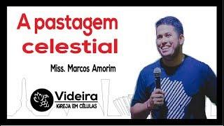 Baixar A pastagem Celeste - Miss. Marcos Amorim - Reunião de Líderes da RMBH - 03.09.18