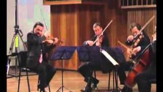 QUARTETTO di VENEZIA  - L.V. Beethoven: quartetto op. 132 - (Assai sostenuto - Allegro)
