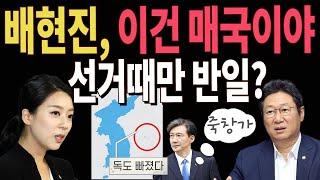 배현진에, 文정부 독도팔이 딱 걸렸다!