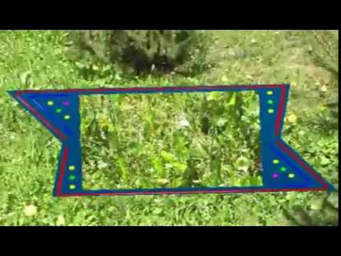 Таинственный сад / Secret Garden - Смотреть онлайн
