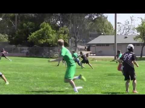 Video 447