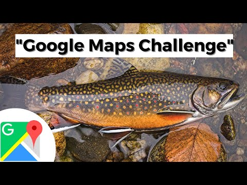 """BACKCOUNTRY Fly FISHING For NATIVE Maine BROOK TROUT!! """"Google Maps Challenge"""""""