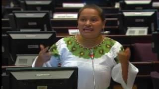 Sesión 429 del Pleno (04-01-2017)