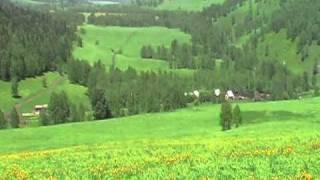 Горный Алтай. Конные туры.(Горный Алтай. Конный тур. Индивидуально. Для одного человека. Гид опытный, много лет водит туристов в горы...., 2011-02-01T04:42:51.000Z)
