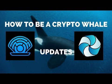 How to be a Crypto Whale | $HPB and $PRL Big Updates