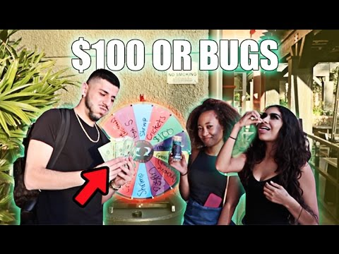 SPIN THE WHEEL GAME ($100 vs EATING BUGS)