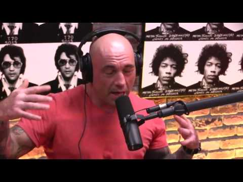 Joe Rogan and Julie Kedzie's discussion on Protesting