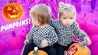 HALLOWEEN PUMPKIN PATCH FAMILY FUN TRIP