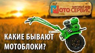 Как правильно выбрать мотоблок для обработки огорода, фото, видео