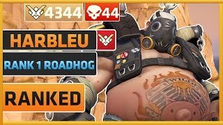 Rank 1/Top 500 God Tier Roadhog Player Harbleu | Overwatch
