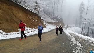 Cross caritabil Alerg pentru Robert Cadar