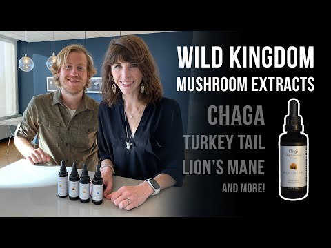 Chaga & Reishi Mushroom Extracts: Real Health Benefits? Lion's Mane & Turkey Tail Too!