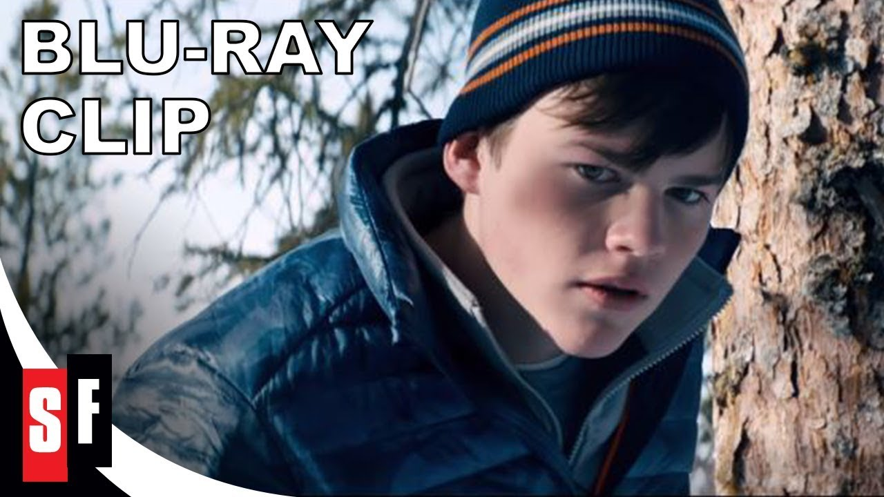 Download Walking Out (2017) - Clip 3: Davids Finds A Bear (HD)