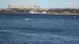 Эксел Лайн 360 - лёгкость, скорость, мореходность