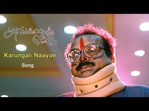 Angadi theru Video songs | Angadi theru Songs | Tamil Video songs | Karungali Naayae Video Song