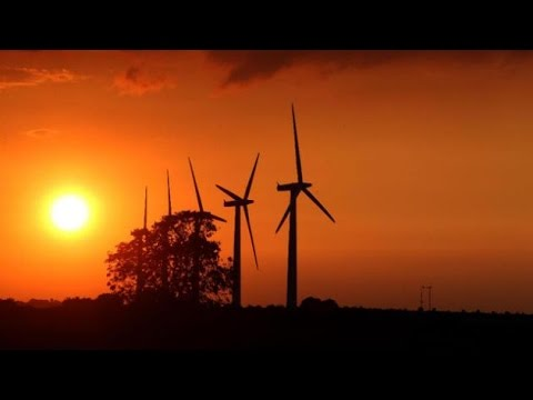 Cutting renewable energy support 'sends perverse signal'