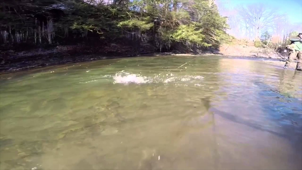 Zero limit adventures fly fishing elk creek pa youtube for Pa out of state fishing license