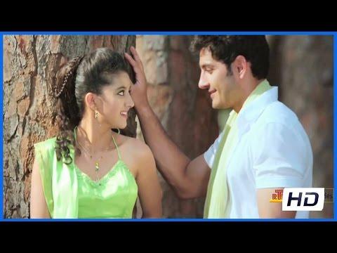 gayakudu-movie---meghaladaaka-song-trailer---ali-reza,shriya-sharma