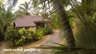 Пляж Чонгмон. 1 и 2х спальные дома в аренду на Самуи. Объекты №0401036 и 4002037(Бронировать: http://samui-people.ru/real-estate/1-spalnye-doma-v-poselke-na-chongmone-752 ..., 2016-05-25T09:59:42.000Z)