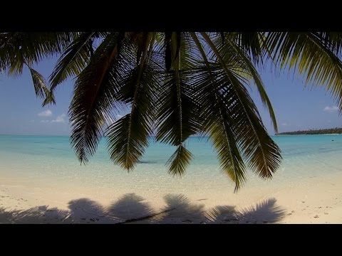Cocos (Keeling) Islands Dive Adventure