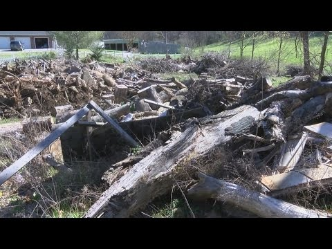 State agency calling on land owner to clean up property on Ollie Collins road in Carter County