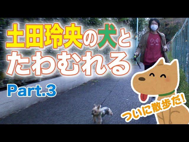 【土田玲央の犬とたわむれる】Part.3