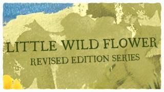 Little Wild Flower Amish series
