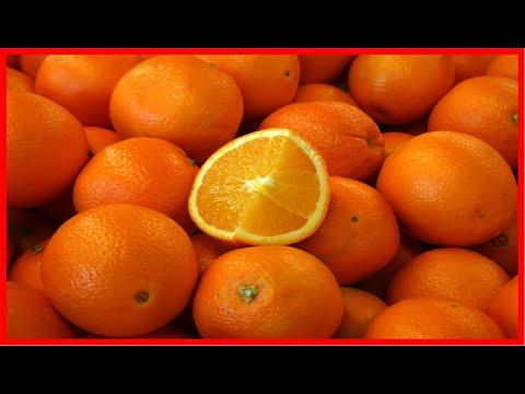 Os 15 Benefícios da Vitamina C Para Saúde | Dicas de Saúde