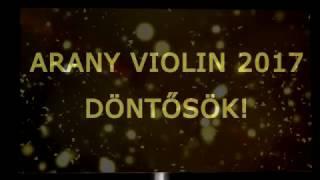 Csomópont - Arany Violin Énekverseny 2017 - Döntősök - Szitai  Ferenc
