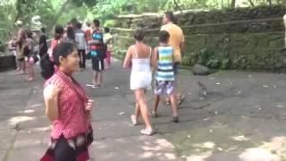 Download Vivien's visit to Bali