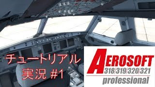 Aerosoft A319 Professional 日本語チュートリアル マニュアルが難しく...
