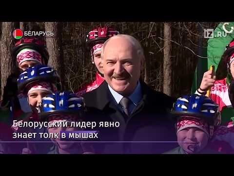 Лукашенко развеселил детей шуткой о крысе