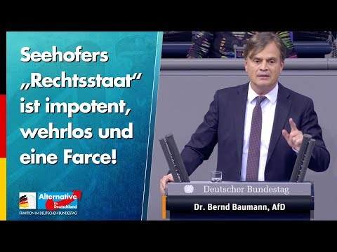 """Seehofers """"Rechtsstaat"""" ist impotent, wehrlos und eine Farce! - Bernd Baumann - AfD-Fraktion"""