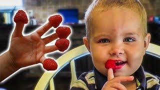 Grateful Raspberries!