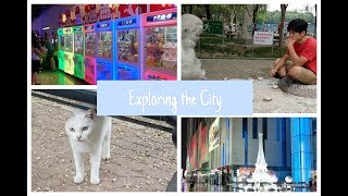 Cutest Cat Ever, Exploring the City, Peppa Pig Everywhere?   China Vlog #2