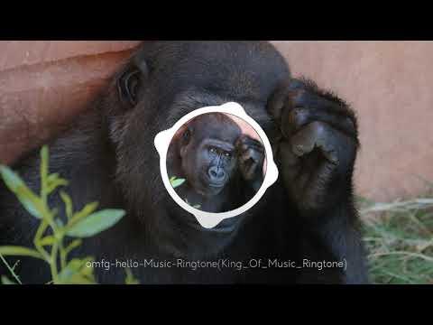 funny-music-ringtone,new-mp3-music-ringtone-2019,king-of-music-ringtone