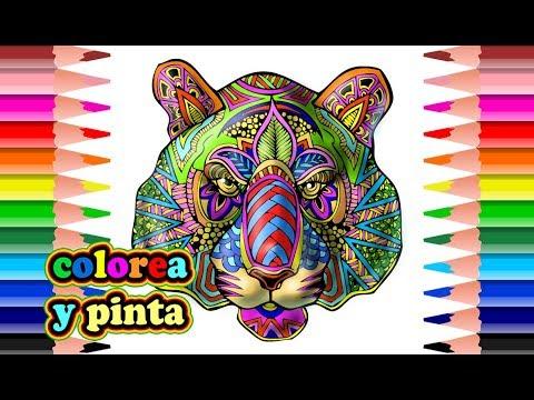 Tigre mandala para colorear hd youtube - Tigre mandala ...
