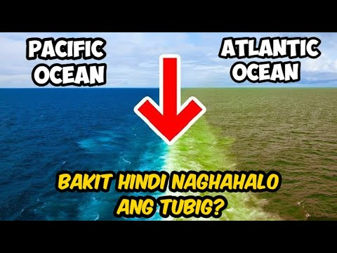 Bakit Hindi Naghahalo Ang Tubig Sa Pacific At Atlantic Ocean?