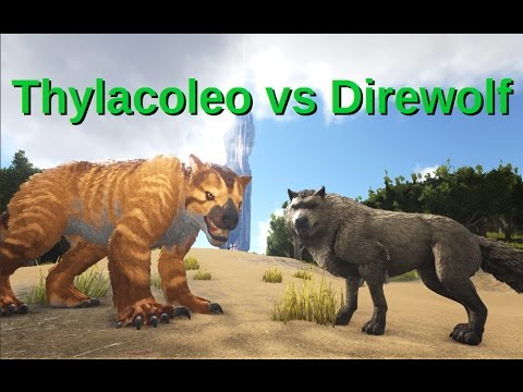 Spinosaurus Vs Rhino And Mammoth Ark Survival Evolved Youtube A hyenadon would easily crush them in real life. spinosaurus vs rhino and mammoth ark