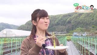 鳥取市青谷町でアスパラガスを栽培している新岡三郎さん。定年退職後に...