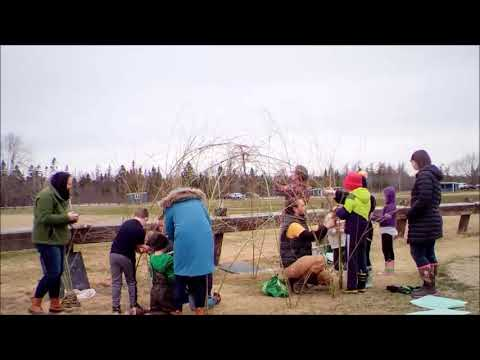 Building a Living Willow Shelter at Jonesport Elementary School
