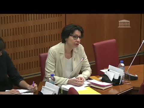 Auditions commission d'enquête 17 mai bis