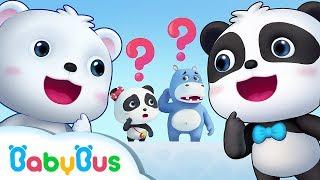 Manakah Panda Kiki Yang Sebenernya ? | Kumpulan Kartun Panda | BabyBus Bahasa Indonesia