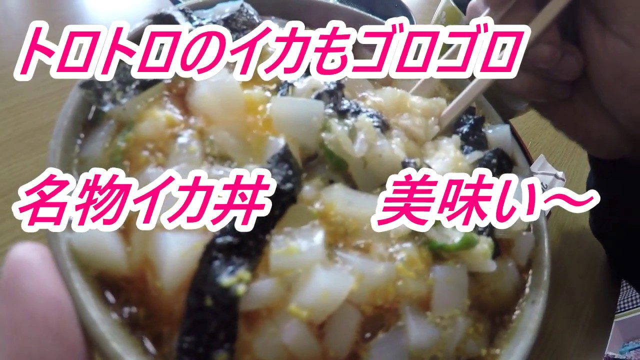 福井県ドライブインよしだ 名物イカ丼\u203cイカしたイカ丼食べにイカなイカ?ツーリング