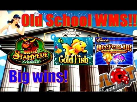 Download gowild casino